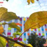 ЖК Бестужевские сады